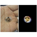 Khodamic Lotus Bezoar Stone Best For Prosperity and Love